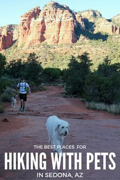 One of the greatest ways to enjoy the great outdoors is by hiking. Hiking with pets in Sedona is a great way to get everyone out and about, enjoying nature! Oak Creek Canyon Arizona, Sedona Arizona, Arizona Road Trip, Road Trip Destinations, Love Pet, Outdoor Life, Family Activities, Camping Hacks, Weekend Getaways