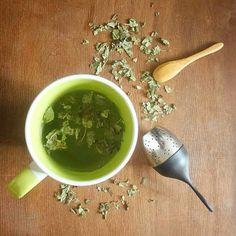 Naturopathie écologie vegan (@lebonheurestdanslanature) • #naturopathie Aimez-vous les tisanes de Mélisse ? La mélisse est une plante sauvage, que l'on peut facilement faire pousser au jardin. . Elle aide les personnes qui ont des maux de ventre lorsqu'elles sont stressées ou angoissées. (Lien entre le premier et le deuxième cerveau : le ventre). Elle soulage aussi les douleurs liées aux règles. Nutrition, Aide, Vegan, Instagram, Herbal Teas, Acupressure, Naturopathy, Brain, Vegans