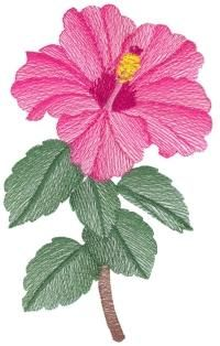 Lite Hibiscus Sets 1 and 2 Large Hand Embroidery Flowers, Hand Work Embroidery, Crewel Embroidery, Ribbon Embroidery, Embroidered Flowers, Embroidery Stitches Tutorial, Free Machine Embroidery Designs, Bordado Floral, Brazilian Embroidery