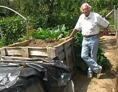 komposztalas Garden Plants, Vegetables, Anna, Gardening, Diy, Bricolage, Vegetable Recipes, Garten, Veggie Food