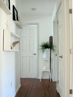 white with dark floors