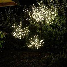#Kirschblütenbäume machen auch zu #Weihnachten eine gute Figur in ihrem Garten. #weihnachten #weihnachtsdeko #weihnachten #dekoration #weihnachtsbeleuchtung #baum #beleuchtung #weihnachten #deko #weihnachten #kirschblütenbaum