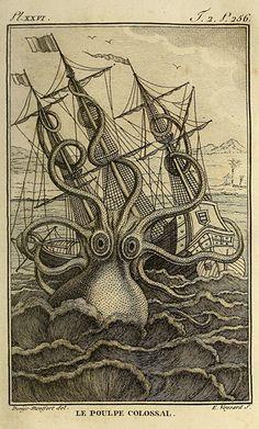 Histoire naturelle, générale et particuliere, des mollusques, animaux sans vertèbres et a sang blanc (1802) by Felix de Roissy