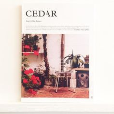 Cedar is a sumptuous yet cooly composed collection of #stories & #photography inspired by #nature. We've had a small windfall of beautiful magazines on this theme of late & they all bring something fresh to tired eyes. Most excitedly this is another gem from the #southwest. @cedarmagazine #garden #theethicurean #cornwall #barbarahepworth #Bath #Bristol #barbican #urbangarden #food #foraging #sicily