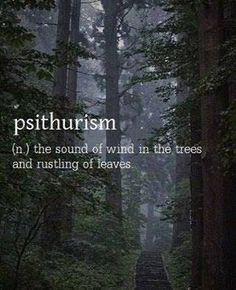 psithurism - sound of wind in the trees