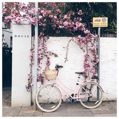 LONDON by a londoner - https://www.instagram.com/katya_jackson/ and OkButFirstCoffee.com