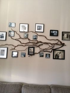 DIY home decor out off the tree branches - DIY home decor out off the tree branches . - DIY home decor out off the tree branches – DIY home decor out off the tree branches – bra - Family Tree Photo, Family Tree Frame, Family Wall, Photo Tree, Family Photo Displays, Family Tree Wall Decor, Family Tree With Pictures, Family Trees, Tree Wall Art