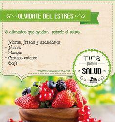 Alimentos que te ayudarán a combatir el estrés.