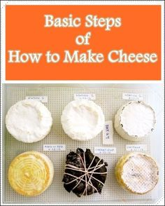 Basic Steps Of How To Make Cheese - Homesteading - The Homestead Survival .com (Artisan Cheese Making) Cheese Dishes, Cheese Recipes, Cooking Recipes, Salad Recipes, Survival Food, Homestead Survival, Survival Shelter, Emergency Preparedness, Survival Tips
