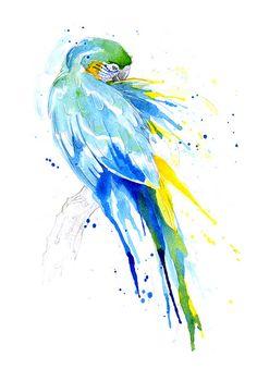 Parrot V - Catablu Macaw     www.amyholliday.co.uk