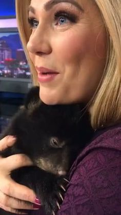 Apparently bear cubs sound like a flooded engine when they purr Best Picture For Cutest Baby Animals Cute Little Animals, Cute Funny Animals, Cute Dogs, Cute Babies, Funny Monkeys, Cute Animal Videos, Funny Animal Pictures, Funny Animal Gifs, Bear Cubs