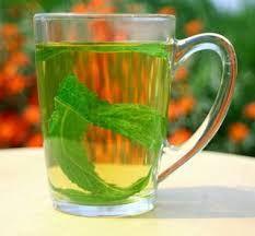 فوائد شرب النعناع مع الشاي أو لوحده مع الماء الساخن والسكر أصبح النعناع يحتل مكانة جيدة في قلوب الناس وذلك للمذاق الفريد من نو Herbal Medicine Tea Glassware