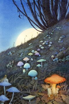 Enchanted forest... make mushrooms paint with dayglow put in garden glow at night