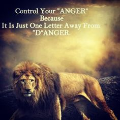 Lion/quote