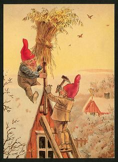 Vintage Swedish Christmas Card ~ Tomkes/Gnomes setting up the Wheat Sheath for winter's birds ~ Orange Accents