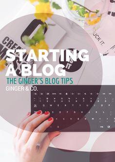 Starting a Blog (The Ginger's Blog Tips)