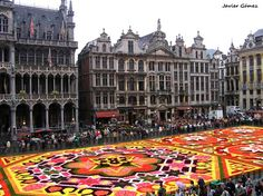 Alfombra de flores en la Grand Place, #Bruselas #Bélgica