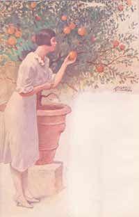 Delly, Anita Ill. di Alberto Zardo