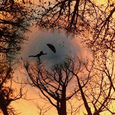 اطلع على alijardine's  صورة على #PicsArt  قم بإنشاء خاصتك مجاناً https://bnc.lt/f1Fc/WAEipcecYo