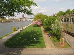 Passeio pelas margens do rio Main - Frankfurt - Alemanha