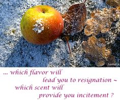 ... which #flavor will lead you to #resignation ~ which #scent will provide you #incitement ?
