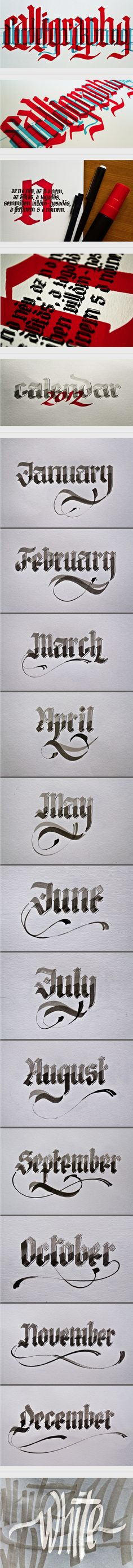 Calligraphy by Renato Molnar, via Behance