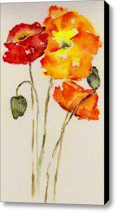 Poppy Trio Stretched Canvas Print / Canvas Art By Anne Duke