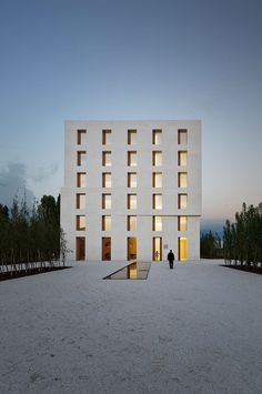 Beautiful calm and rational facade by Baumschlager Eberle.