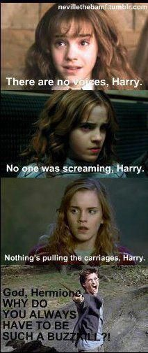 Why do you have to be such a buzzkill Hermione??