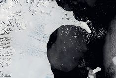 NASA Earth Observatory January 2002 Collapse of the Larssen Ice Shelf Antarctic Ice Shelf, Sociological Imagination, Nasa Solar System, Foto Gif, Sea Level Rise, Beautiful Gif, Earth From Space, Environmental Issues, 2017 Photos
