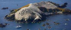 Les Sept-Iles à Perros-Guirec l'archipel a été classé Site Naturel Protégé en 1912 puis Réserve Naturelle en 1976. Avec plus de 20 000 couples d'oiseaux marins et 27 espèces nicheuses, c'est la plus importante réserve du littoral française