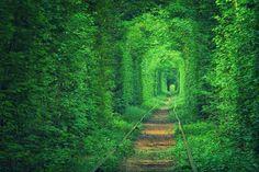 Tunnel of Love, Klevan , Ucrânia - Este túnel foi moldado ao longo de muitos anos, com o as linhas de trem abandonadas. Hoje, a pista é um local romântico para um passeio à tarde