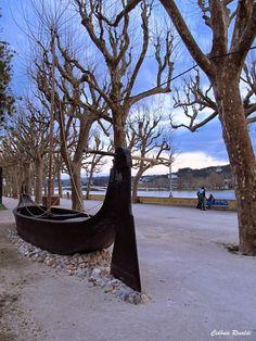 Barca Serrana - Rio Mondego