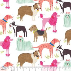Blend Best in Show by Maude Asbury 101 116 01 1 White Pedigree $9.60/yd PREORDER DUE FEB/MARCH '15