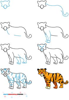 How to Draw A Tiger for Kids | How to Draw Animals for Kids | Bloglovin'