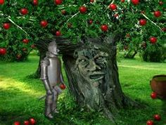 The Tin Man taking apples from the apple tree Wizard Of Oz 2, Wizard Of Oz Quotes, Dorothy Oz, Dorothy Gale, Enchanted Tree, Land Of Oz, Yellow Brick Road, Tin Man, The Best Films