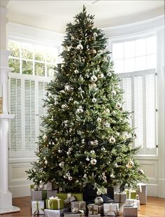 Balsam Hill Fraser Fir™ - Love this in 9-ft w/ Candlelight LED lights. Widely regarded as the best Christmas tree species in nature, the Fraser Fir is native to the forests of North Carolina and surrounding Appalachian states. Our BH Fraser Fir™ garners its identity and inspiration from this most famous fir. Equipped with the revolutionary Easy Plug™ feature, our Color+Clear™ prelit variety (up to 9') and all other prelit options (up to 12') eliminate the need to connect light strings…