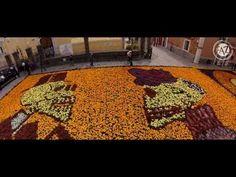 ▶ Desfile de calaveras y Tapete monumental en Atlixco 2013 - YouTube