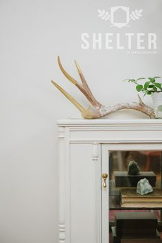 SHELTER by Spruce Collective - Furniture Paint - Made in Canada - GOOSEDOWN