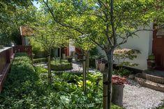 Ateljé Harmoni och Glädje — Almbacken Trädgårdsdesign Plants, Gardens, Outdoor Gardens, Flora, Garden, Plant, Yards, Formal Gardens