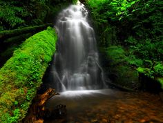 Fern Creek Falls In Tillamook County, Oregon, United States