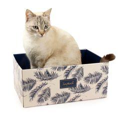 Griffoir Pour Chat En Carton Diy Zolia Tropicat Griffoir Chat Griffoir Carton Diy