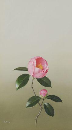 Important Australian Art 4 Australian Art, Sugar Flowers, Camellia, Ikebana, Watercolor Flowers, Fabric Flowers, Nature Photography, Planters, Template