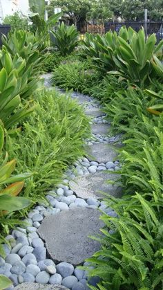 A simple clean landscape with only two different plants! Kupukupu fern and Emerald green ti combined with stepping stones and river rock make this a low maintainace landscape.