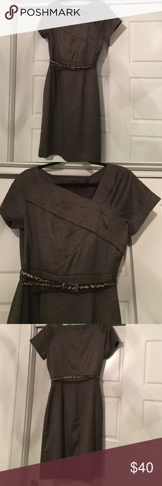 Classic brown tweed dress Tahari brown tweed dress with removable leopard print belt. Pleated detail in front. This dress is so classic and perfect for a business environment. I used to get compliments every time I wore it! Tahari Dresses Midi