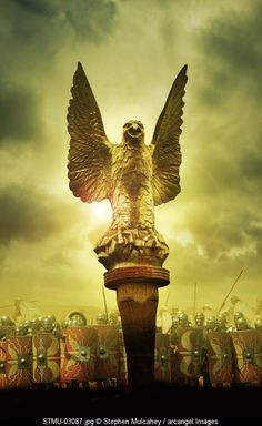 A Roman Eagle © stephen Mulcahey / Arcangel Images