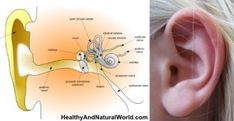 How to Naturally Get Rid of Clogged Ears