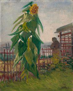 Die 10 Besten Bilder Auf Sonnenblumen Van Gogh Actividades