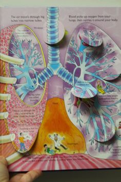 Wee Gillis - lungs - see inside your body book