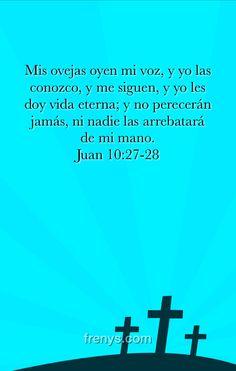 La palabra de Dios - Mis ovejas oyen mi voz, y yo las conozco, y me siguen, y yo les doy vida eterna; y no perecerán jamás, ni nadie las arrebatará de mi mano. Juan 10:27-28